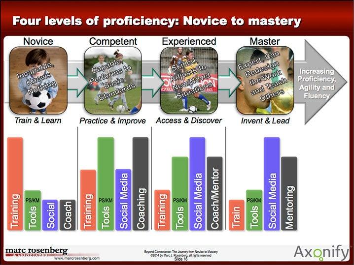 marc rosenberg journey to mastery